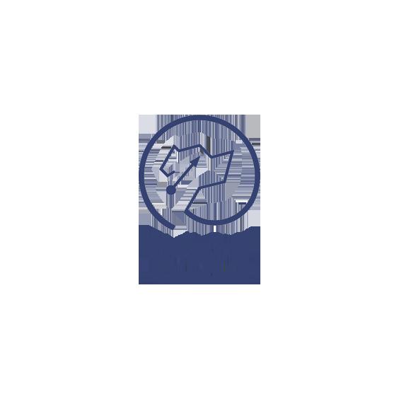 First Star Ventures